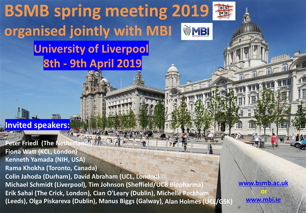 "BSMB Spring Meeting ""Stroma, Niche and Repair"""